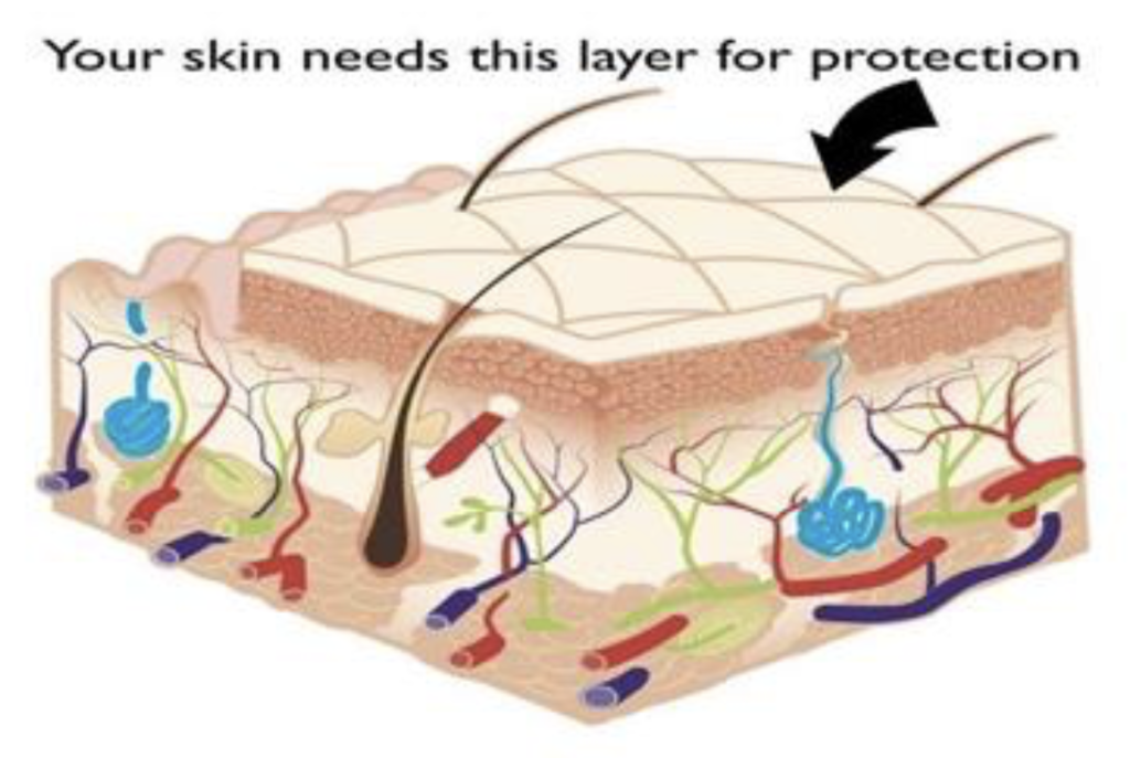 Exfoliation can create the very skin you hope to avoid!